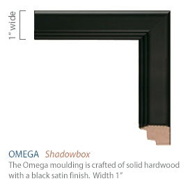 Omega Moulding - black satin finish