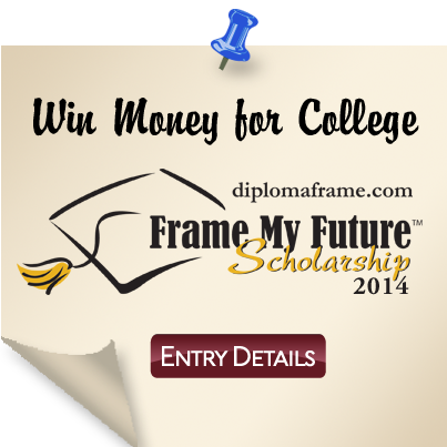 Frame My Future Scholarship Contest 2014 Entry Details