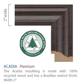 Acadia Moulding - walnut finish