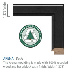 Arena Moulding - black satin finish