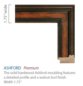 Ashford Moulding - detailed profile with a walnut burl finish