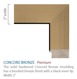 Concord Bronze Moulding - brushed bronze finish with a black inner lip
