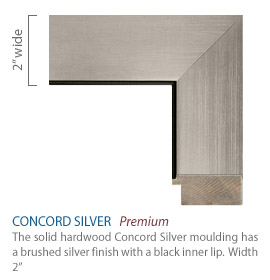 Concord Silver Moulding - brushed silver finish with a black inner lip