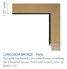 Concordia Bronze Moulding - brushed bronze finish with a black inner lip