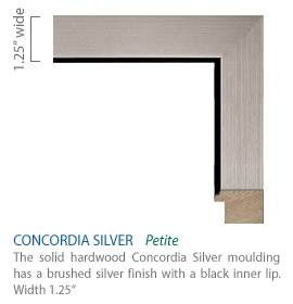 Concordia Silver Moulding - brushed silver finish with a black inner lip