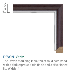 Devon Moulding - dark espresso satin finish with a silver lip