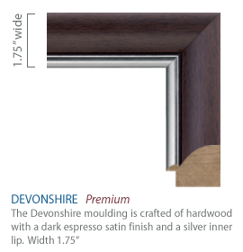 Devonshire Moulding - Dark espresso satin finish with a silver inner lip