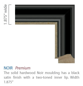 Noir Moulding - black satin finish with a two-toned inner lip