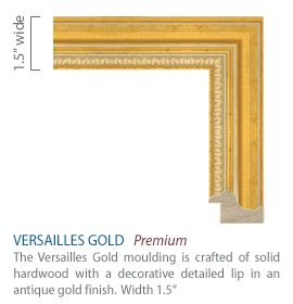 Versailles Gold Moulding - solid hardwood with a decorative detailed lip in an antique gold finish
