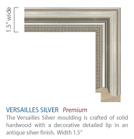 Versailles Silver Moulding - solid hardwood with a decorative detailed lip in an antique silver finish