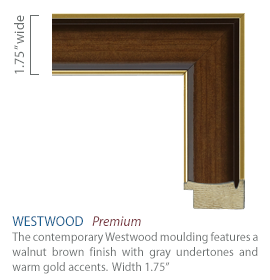 Westwood Moulding - walnut brown finish with gray undertones and warm gold accents