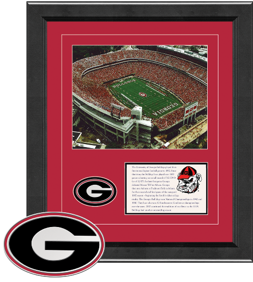 Dynasty Frame - The University of Georgia