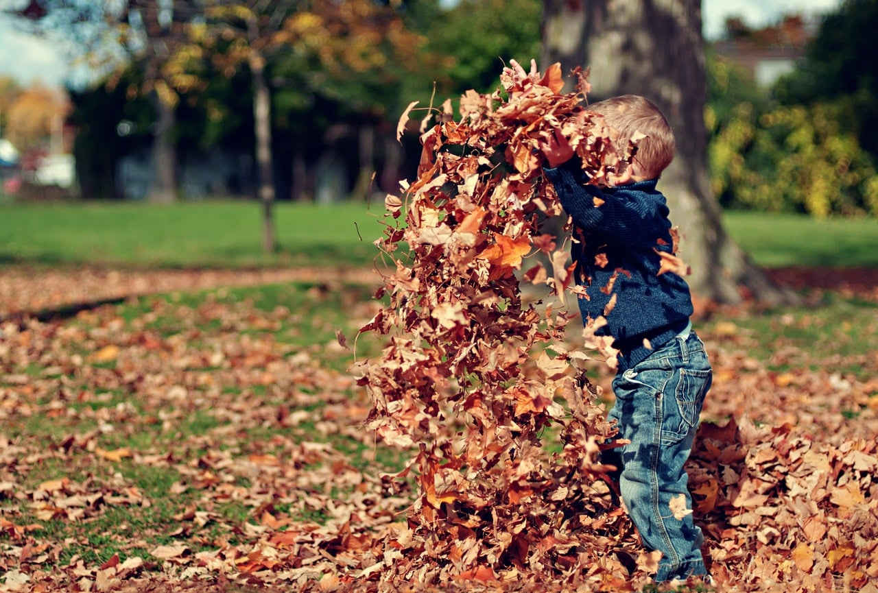 boy-playing-with-the-leaves