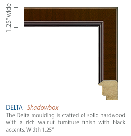 Delta Moulding - Rich walnut finish with black accents