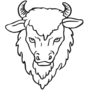 Buffalo Embossed Black Insignia