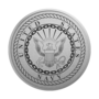 Navy Engraved Medallion Silver Insignia