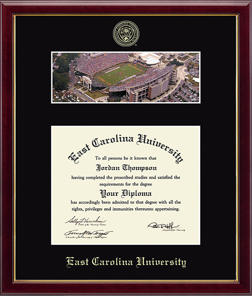 Stadium Campus Scene Diploma Frame in Galleria