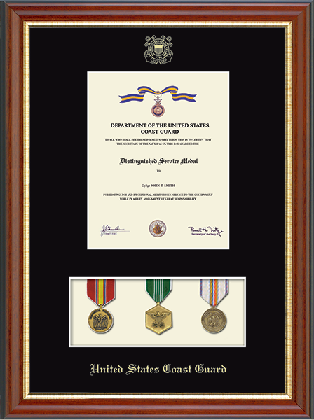 Medal Display Certificate Frame in Newport
