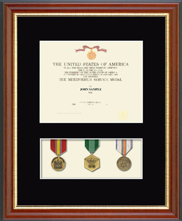 Military Certificate and Medal Display Frame - (Black) in Newport