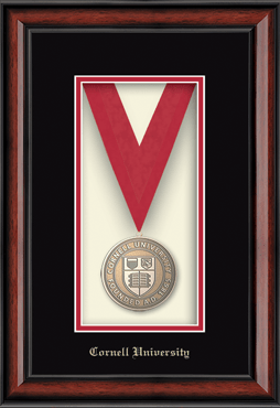 Gold Embossed Edition Medal Frame in Southport