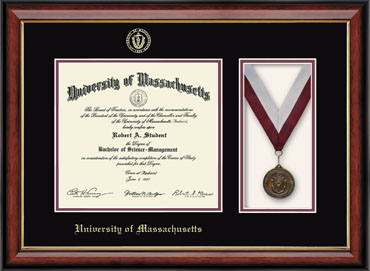 Medal Diploma Frame in Southport Gold