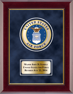 U.S. Air Force Masterpiece Medallion Award Frame in Gallery