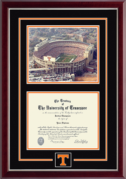Campus Scene Spirit Medallion Diploma Frame in Gallery Silver