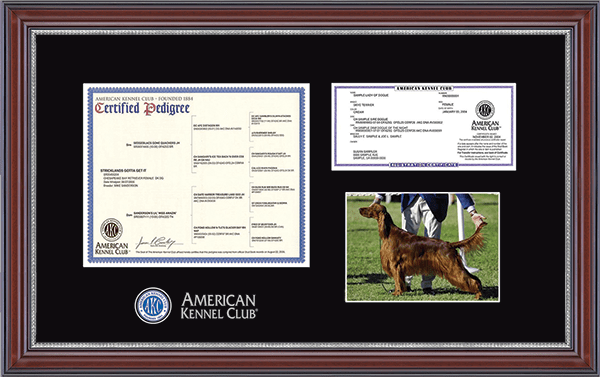 "Masterpiece Pedigree, Registration, & 5"" x 7"" Photo Frame in Kensington Silver"