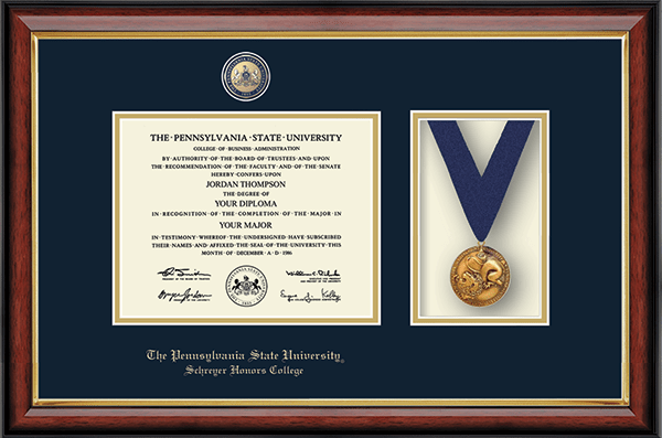 Masterpiece Medal Diploma Frame in Southport Gold