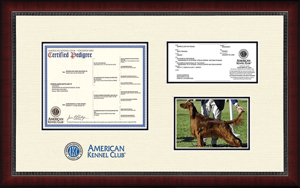 "Dimensions Pedigree Certificate/Registration & 5""x7"" Photo Frame in Sutton"