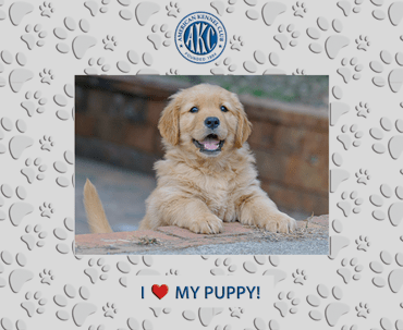 I love My Puppy Spectrum Pattern Photo Frame