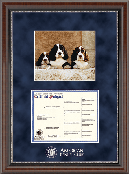 "Silver Embossed Pedigree & 8"" x 10"" Photo Frame in Chateau"
