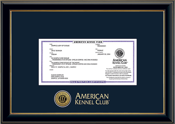 Engraved Medallion Registration Frame in Onexa Gold