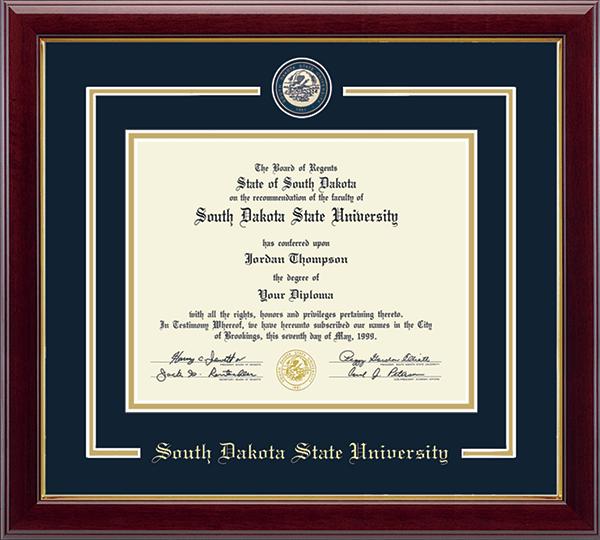 Showcase Edition Diploma Frame in Gallery