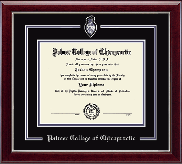 Pewter Spirit Medallion Diploma Frame in Gallery Silver