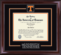 The University Of Tennessee Knoxville Spirit Medallion